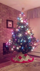 Christmas Tree at the WW home!
